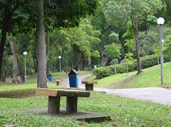 ito ang typical park sa singapore. masarap lakaran o kay pag bisikletahan. maraming puno at maraming mga park bench kung saan pwede kang mag pahinga. kaunti lang ang nagpupunta sa mga park pag regular days kaya masarap ditong mamasyal para mag muni-muni.
