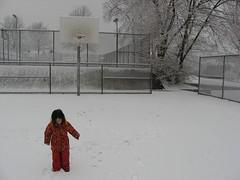 Snowy Feats
