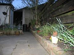 The Tibbets Garden