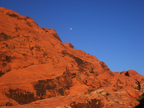 The Moon & Mojave