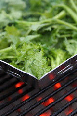Grill-sauted Rabe 1