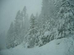 2007 SG Tahoe Trip 038