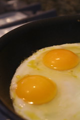 Starting Eggs Carlos