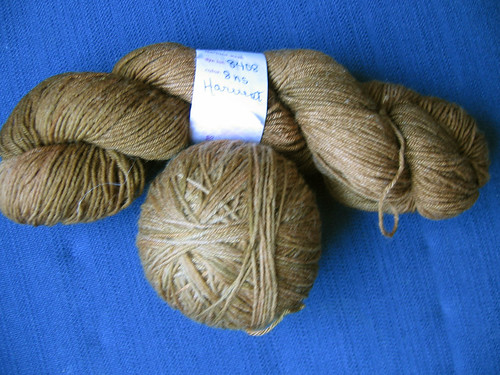 Lorna's Laces Harvest