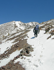 Arizona's highest Summit - Mount Humphreys - F...