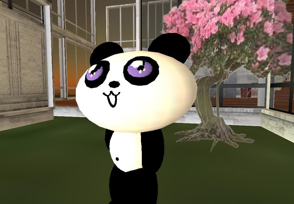 Polom Panda