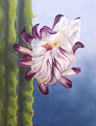 Cactus Flower Again
