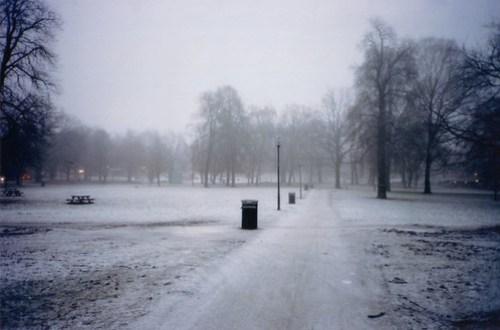 Sofienbergparken-chill