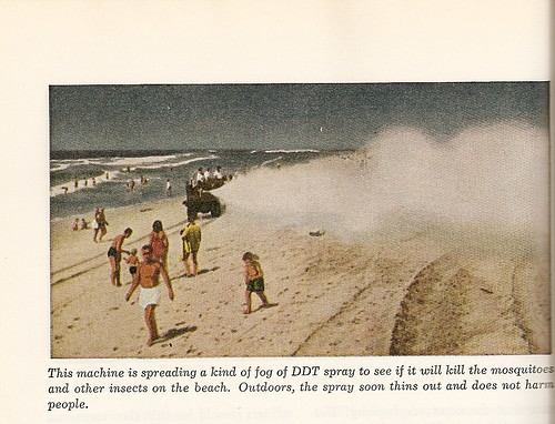 Photo from a 1950s science text, showing DDT spraying on crowded beach