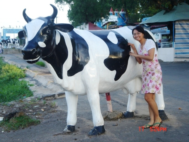 Long Thanh