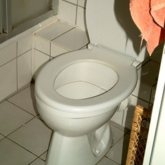 A toilet.  Photo by Sven-S. Porst