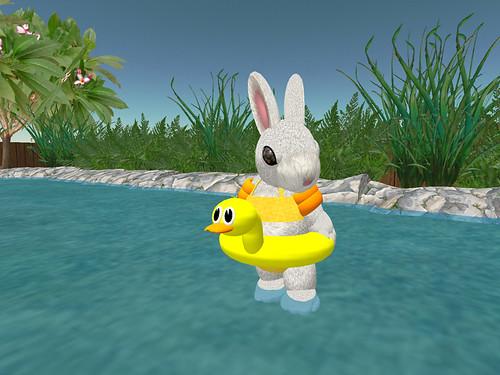 bunny_spring001