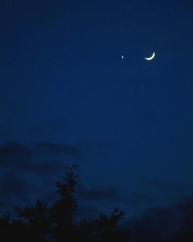 Moon meets Venus