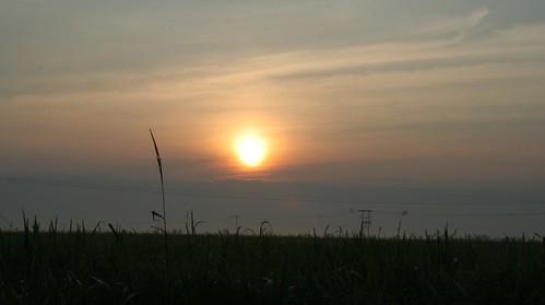 Sun rise, silloutte