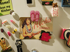 31 days - 31 photos: Day 25 - New Magnets from Hawaii
