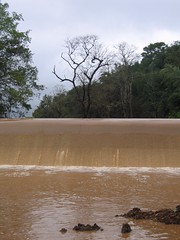 Kollibacchalu Dam -Malenadu Heavy Rain Effects Photography By Chinmaya M.Rao   (88)