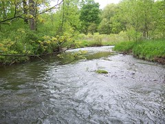 Clinton River North Branch