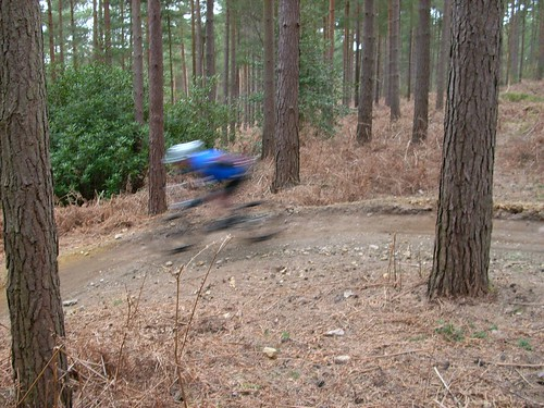 Blur on the berm