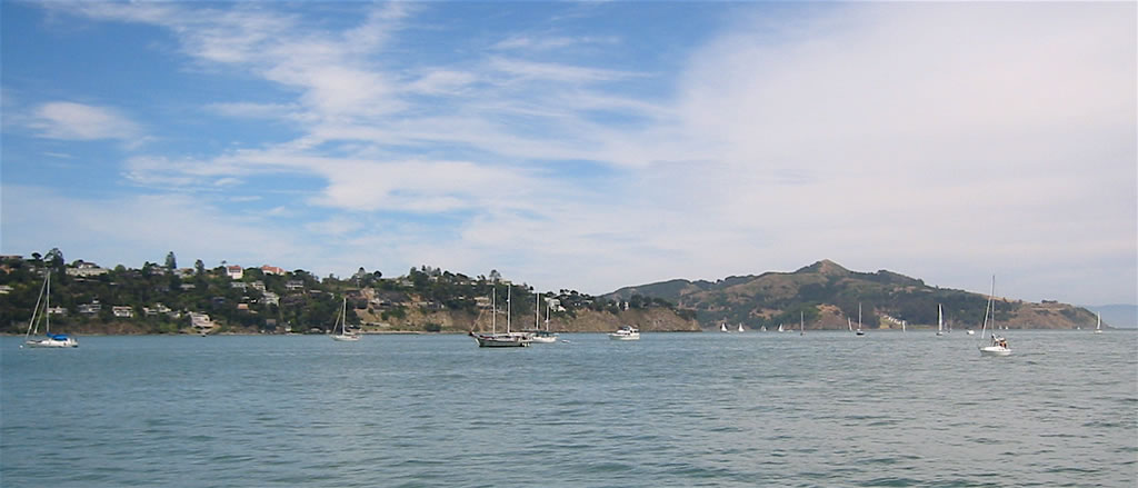 Belvedere across Richardson Bay seen from Sausalito 31 May 2004