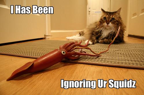I Has Been Ignoring Ur Squidz