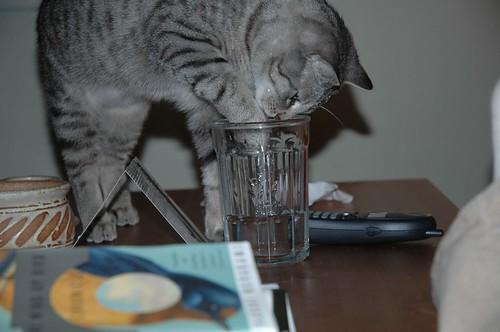 Neville's Drinking Habit