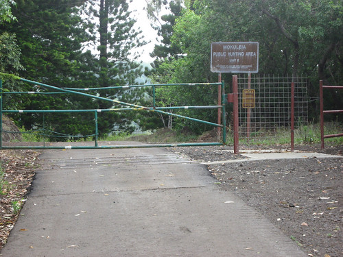Gate at top of hill at Peacock Flats