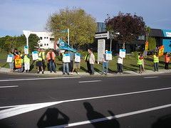 Amcor Picket