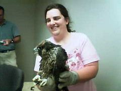 Mary and Wendybird
