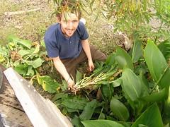 Josh Hobby in the garden