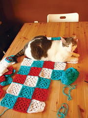 Pablo and Granny Squares II