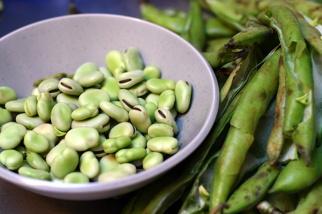 favas, out of their pods