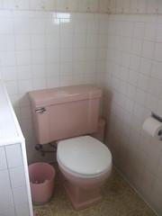 Pink toilet
