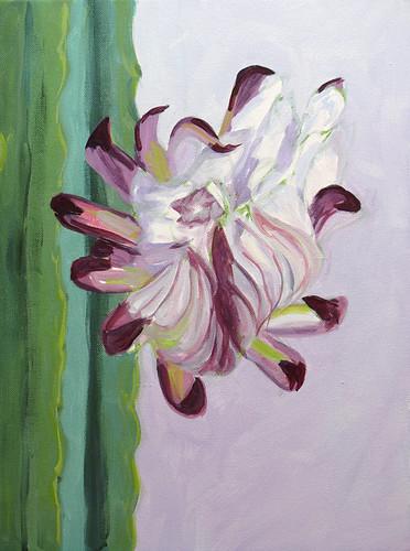 cactus-flower-in-progress