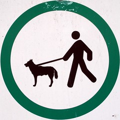 Keep dogs on leash
