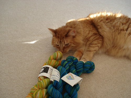 Oscar and New Yarn