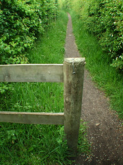 Fence post along Storeton footpath