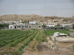 Israel Farm_1312
