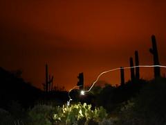 night hike