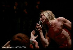 Iggy and the Stooges  _MG_4697.jpg