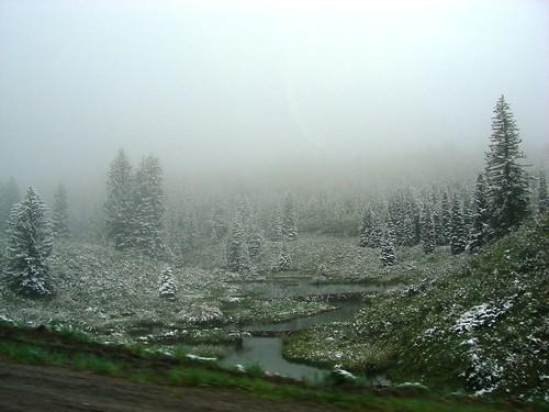 Snow! Lizard Head Pass, Colorado