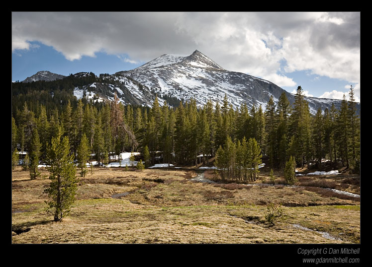 Mammoth Peak, Spring