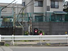 Ueno 13