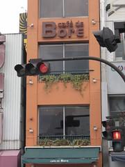 Café de bore