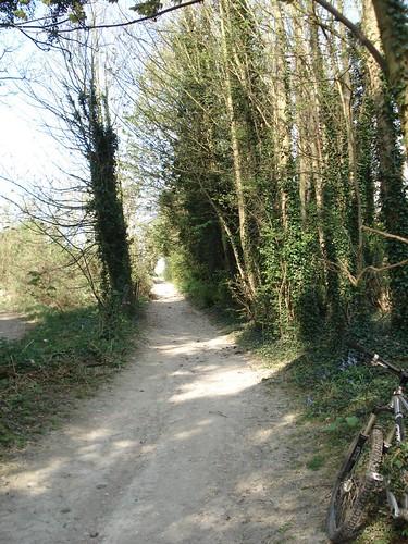 Dry trails