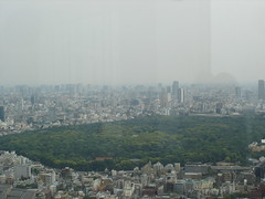 Tokyo Municipal Towers (18)