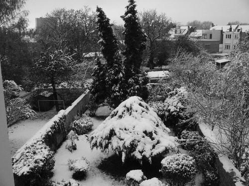 first snow #1