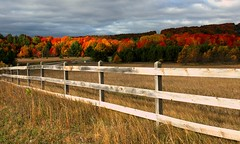Harbor Springs in fall by Latitude45