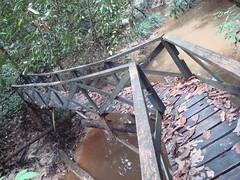 puente sobre arroyo selvatico