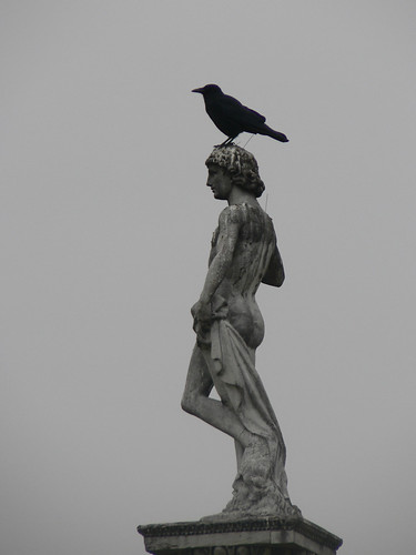 Perched on a statue's head