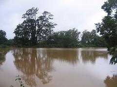 Kollibacchalu Dam -Malenadu Heavy Rain Effects Photography By Chinmaya M.Rao   (121)